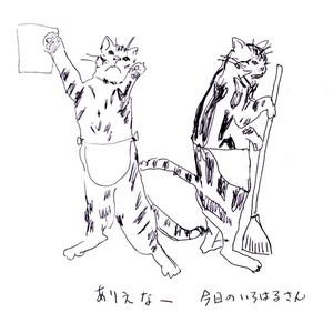 iroharu-san